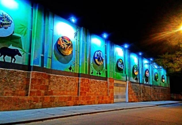 A colorful mural with animals, bamboo and coffee plants, pictured at night.